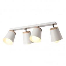 Потолочный светильник Botini